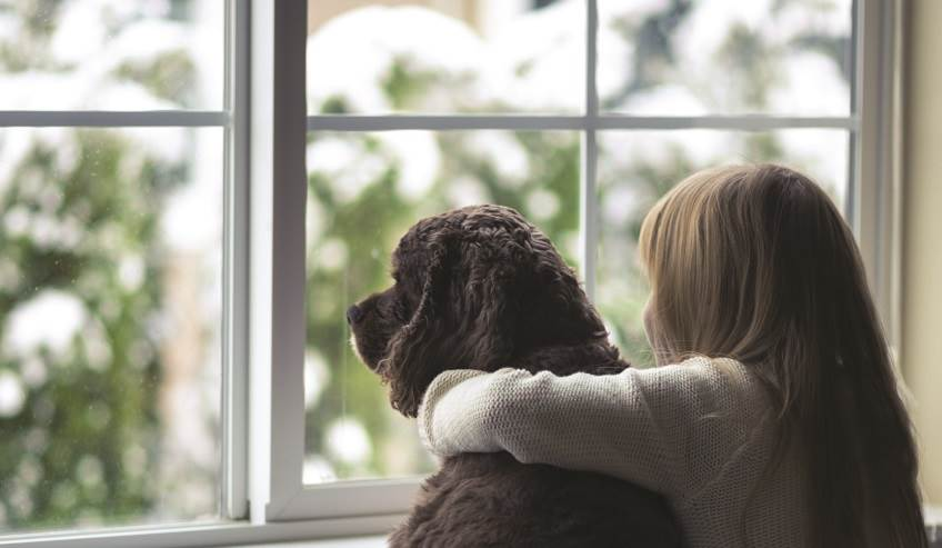 Little girl and her dog looking out a residential window.